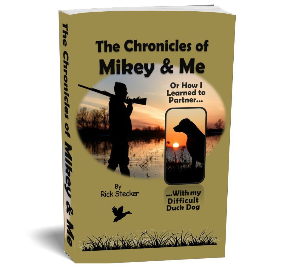 Book cover - The Chronicles of Mikey & Me